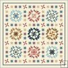 Plain & Fancy Quilt Kit